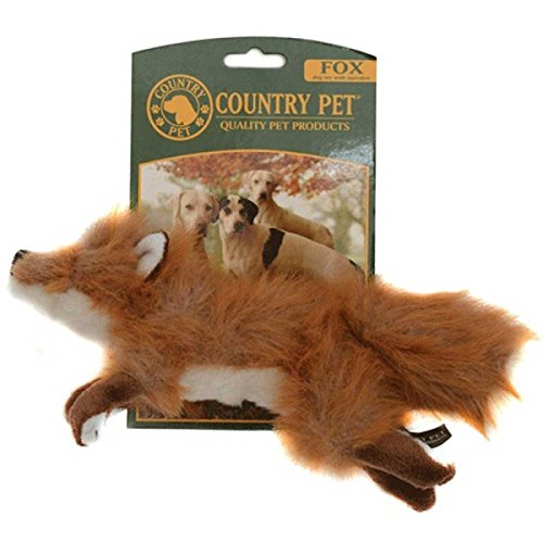country-pet-fuchs