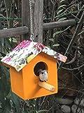 #8: Wonderland Hanging 5 inch height small bird house with artificial Bird in Orange