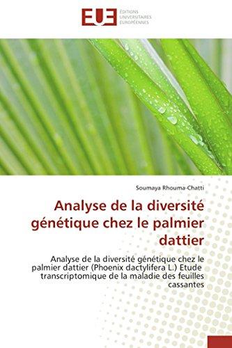 Analyse de la diversité génétique chez le palmier dattier par Soumaya RHOUMA-CHATTI