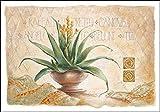 Keilrahmen-Bild - Claudia Ancilotti: Canova Leinwandbild Stillleben floral modern beige (35x50)