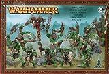 Games Workshop Warhammer Orcos Zalvajes