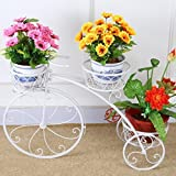 #10: NAYAB | Ivory (Cream) Medium Tricycle Planter without pots/Cycle Style Metal Stand Planter/Garden Pot