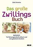 Zwillingsratgeber 51ctjkJM1pL._SL160_ Das große ZwillingsBuch: Ratgeber für Schwangerschaft, Geburt und eine glückliche Kindheit