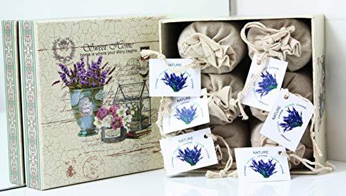 Direct Global Lavendelsäckchen 6 x 20 Gramm, Lavendelbeutel + dekorative Box, Zum Entspannen und Dekorieren des Hauses, Lavendelblüten