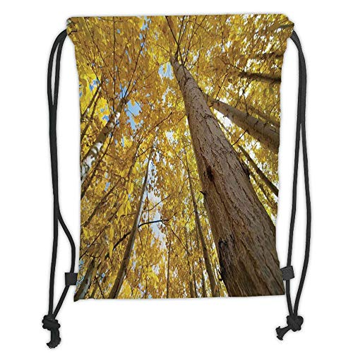 Drawstring Backpacks Bags,Forest Home Decor,Up View of Fall Aspen Tree Leaves in Fade Tone Autumn Season Photo Image,Yellow Soft Satin,5 Liter Capacity,Adjustable String Closure,Th