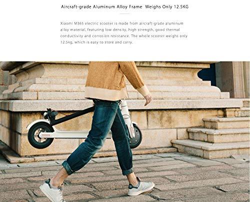 Xiaomi Ninebot mijia M365Smart Elektro-Scooter (schwarz)