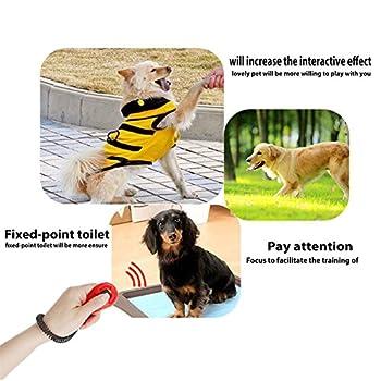 TedGem 4 pcs dog training clicker Clicker avec dragonne élastique , training dressage pour chiens chats chevauxDog Training Clicker avec poignet Chien dog training clicker (petit)