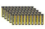 50 Stück Everactive INDUSTRIAL Batterien Mignon AA 2700 mAh 1,5 V HR06 Alkaline