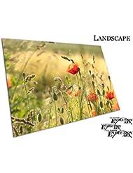 Morning Sunshine Wild Meadow Fleurs Coquelicot Rouge Coquelicots sur le terrain Floral Art, A1 - SAV