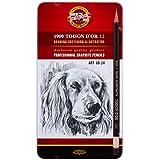 Koh-I-Noor Toison D'or Professional Graphite Pencil ART Set of 12 - 8B-2H