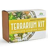 Terrario kit per piante grasse e cactus. Include cactus del suolo, muschio, ghiaia e guida