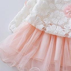 erthome Autumn Infant Baby Kids Girls Party Lace Tutu Princess Dress Clothes