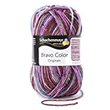 Schachenmayr Bravo Color 20x50g paris color Fb. 02096