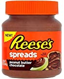 Reeses Peanut Butter Chocolate Jar 13OZ (368g)