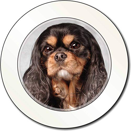Advanta - Tax Disc Holders Black and Tan King Charles Spaniel AutovignetteGenehmigungsinhaber Geschenk - Tan King