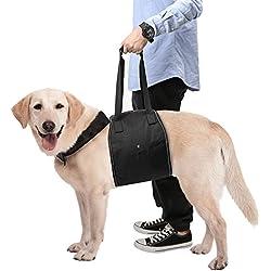 Pawaboo Hundegeschirr Tragehilfe, Hebehilfe Rehabilitation Hunde Rehahilfe Geschirr Harness Hilfsgeschirr mit Griff für Hunde Verletzungen und Arthritis, Schwarz, M