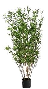 Bamboo Orientale - Albero Artificiale Con Tronchi Veri Da Arredo Interno - Alto 150 cm
