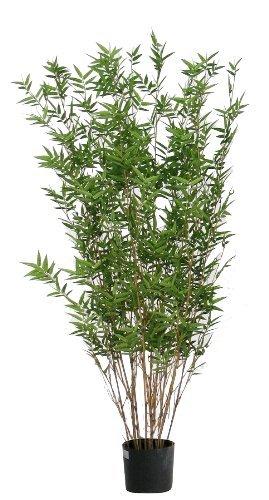 Bamboo Bambu Orientale - Albero Artificiale Con Tronchi Veri Da Arredo Interno - Alto 150 cm