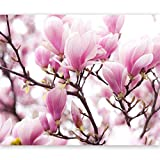 Vlies Fototapete 350x270 cm - Top ! Tapete ! Wandbilder XXL ! Blumen 100406-26
