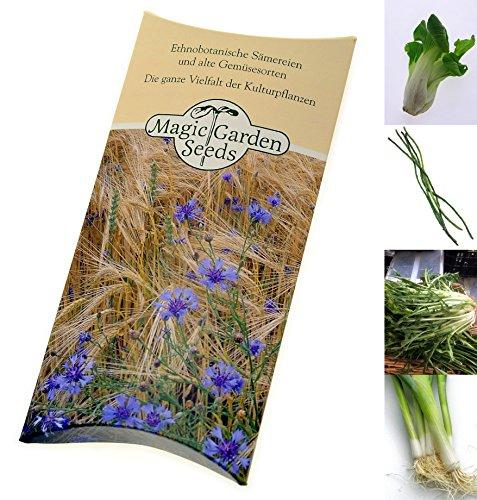 Samen Set: Asia Gemüse - 4 typische asiatische Gemüsesorten für Wok und Dampfgarer in schöner...
