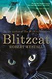 Image de Blitzcat (English Edition)