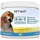 VETnatur® 4in1 Grünlippmuschel-Pulver für Hunde Gelenke mit Wirkungssteigerung durch Omega-3-6 + Präbiotika + Vitamin B +C | 100% Natur | Hergestellt in Deutschland - 250g
