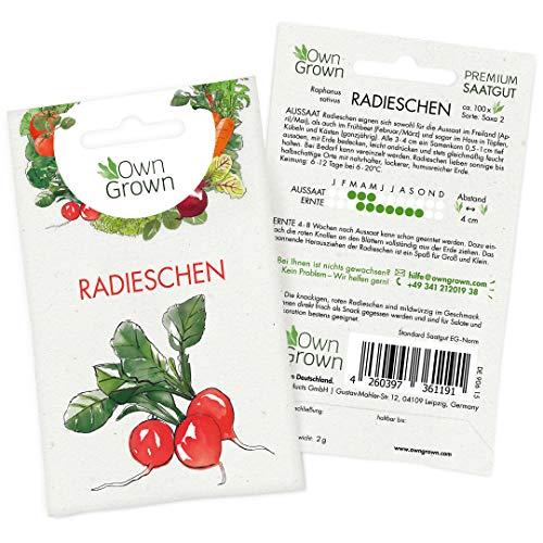 OwnGrown Premium Radieschen Samen (Raphanus sativus), Radieschensamen zum Anbauen, Radieschen Saatgut für rund 100 Pflanzen