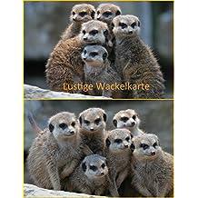 Suchergebnis Auf Amazon De Fur Erdmannchen Postkarten Karten