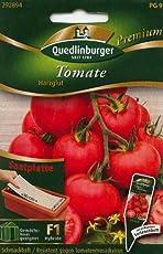 SP Tomate, Harzglut Anzucht F1