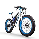 RICH BIT Elektro Fahrrad Männer E-Bike Fett Schnee Fahrrad 1000W-48V-17Ah Li-Batterie 26 * 4.0 Mountainbike MTB Shimano 21-fach Scheibenbremsen Intelligente Elektro-Bike