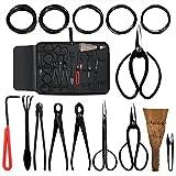 Audeuk Kit de 10 outils pour bonsaï, outils de jardinage avec fils, ciseaux, cisailles en acier carbone, housse en nylon