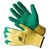 3x Garden Eden Gartenhandschuhe EN 388 | Pflanz- und Bodenhandschuhe für Arbeiten im Garten | Ideal auch als Rosenhandschuhe oder Beethandschuhe | Handschuhe zum Graben | Größe: 11 (XXL)