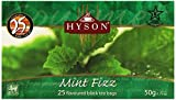 HYSON Filter Bag Tea, Mint Fizz, 25-Count (Pack of 6)