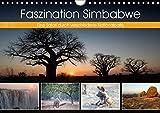Faszination Simbabwe (Wandkalender 2019 DIN A4 quer): Bilder aus verschiedenen Nationalparks in Simbabwe (Monatskalender, 14 Seiten ) (CALVENDO Natur) -