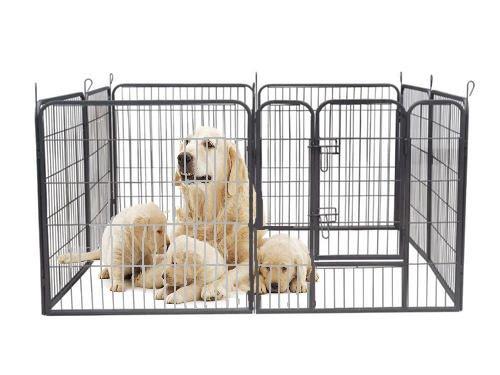Welpenfreigehege YOUNG DOGS Größe XL der Marke MYPETS Laufgitter Welpenauslauf Freigehege -