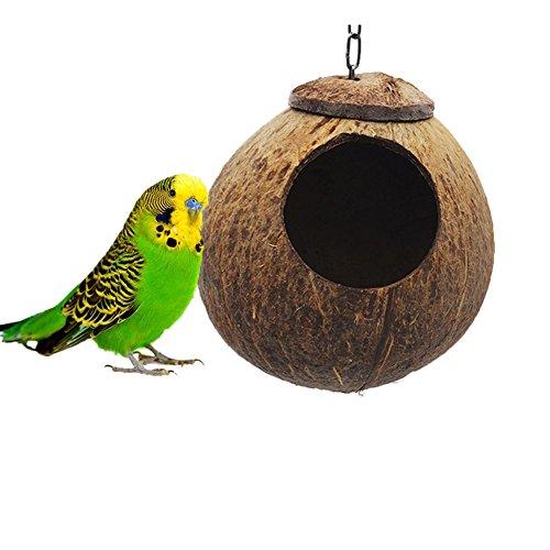 Kleine Finch Feeder (Natürlicher Kokosnuss Shell Bird Nest House Hütte für Pet Parrot Sittiche Nymphensittiche Sittiche Kanarischen Finch Taube Käfig Hamster Ratten Gerbil Mäuse Käfig Feeder Spielzeug)