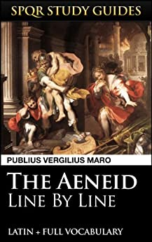 an analysis of the role of virgil on the aeneid Free essay: there are many gods that play a role in the aeneid the main ones are jupiter, king of all deities, juno the divine antagonist of aeneas' destiny.