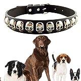 F-eshion Silber Totenkopf Nieten Zubehör verstellbar Weiches Echtleder Halsbänder für kleine mittel große Hunde Halskette Chien Cuir (M schwarz)