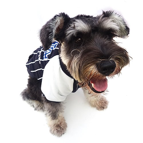 Bomate Welpen Kleidung Jacke Haustier Hund Baseball Jersey Fleece Wintermantel (XL, blau)