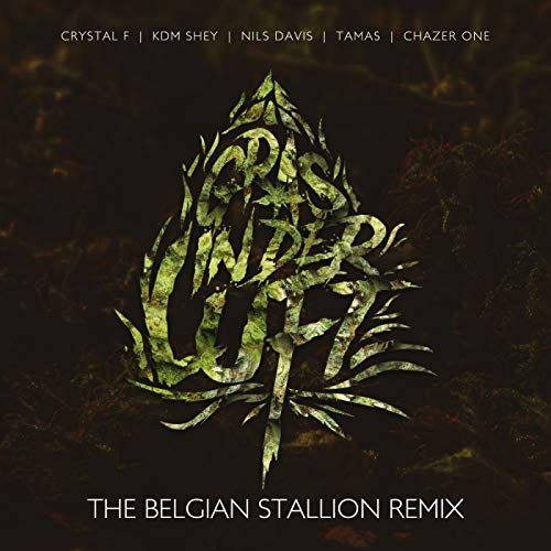 Gras in der Luft [Explicit] (The Belgian Stallion Remix) -