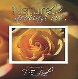 Nature around us.