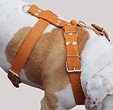 Tan Echtleder Hundegeschirr, Große zu XLarge. 88,9cm 39