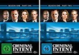Criminal Intent - Verbrechen im Visier, Staffel 1 (6 DVDs)