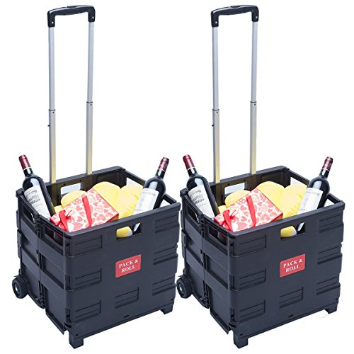 dxp-2x-carretilla-de-las-compras-del-cajn-plegable-hasta-35-kg-contenedor-con-ruedas-2-ws-01
