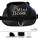 XS Chihuahua Brustgeschirr aus Art Leder mit Wunsch Namen Bestickt schwarz