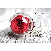 Blütenschmuck - Echte rote konservierte Rose
