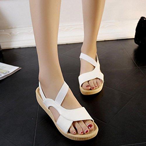 DM&Y 2017 Selvatico sandali della testa dei pesci focaccina moda fondo sandali studenti casuali delle donne di colore solido White