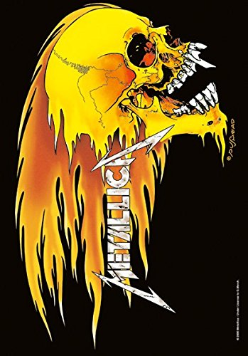 Heart Rock Licensed Bandiera Metallica - Skull & Flames, Tessuto, Multicolore, 110X75X0,1 cm