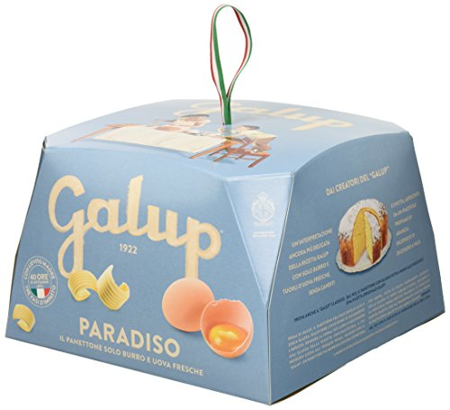 Galup nv09 panettone paradiso, 750 gr