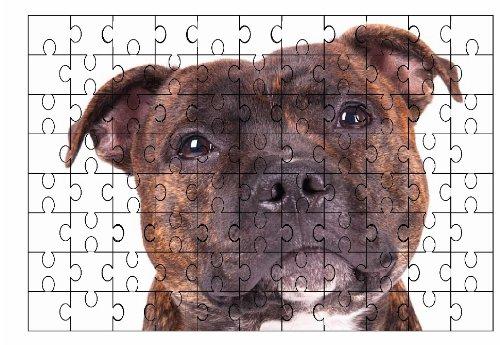 Staffordshire Bull Terrier (Pezzato) Cane Grande puzzle
